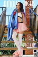 Night In Light
