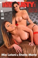 Sheila Marie & Mia Lelani in Ladies In Red: Voluptuous Lesbians Enjoy Deep Anal Insertion gallery from DDFBUSTY