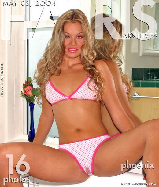 Phoenix in Pink Dots gallery from HARRIS-ARCHIVES by Ron Harris