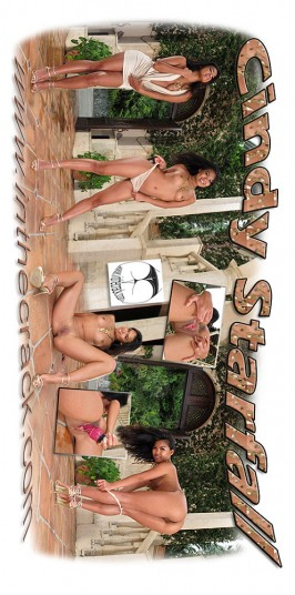 Cindy Starfall  from INTHECRACK
