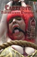 Captured Firecracker Redhead