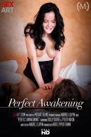 Perfect Awakening