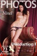 Distruction 1
