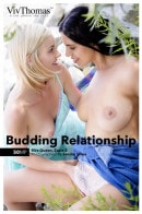 Budding Relationship