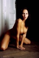 Gabriela in Shadow And Light gallery from ERROTICA-ARCHIVES by Erro - #3