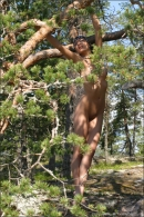 Uli in Through The Pines gallery from MPLSTUDIOS by Alexander Fedorov - #15