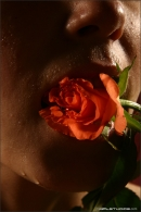 Nata in Love Is A Rose gallery from MPLSTUDIOS by Alexander Fedorov - #13