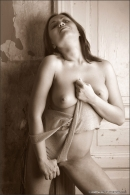 Kira in Erotic Desire gallery from MPLSTUDIOS by Andrey Kozlov - #15