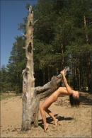 Vika in Tigress gallery from MPLSTUDIOS by Alexander Fedorov - #12