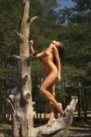 Vika in Tigress gallery from MPLSTUDIOS by Alexander Fedorov - #15