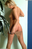 Linda in lingerie gallery from ATKARCHIVES - #6