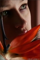 Maria in Bird Of Paradise gallery from MPLSTUDIOS by Alexander Fedorov - #4