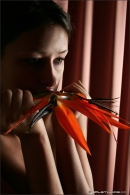 Maria in Bird Of Paradise gallery from MPLSTUDIOS by Alexander Fedorov - #7