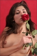 Kristie in Long Stemmed Roses gallery from MPLSTUDIOS by Anton Volkov - #2